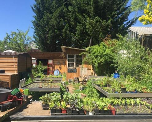 Solawi Trier, Gemeinschaftsgarten, Mai 2021